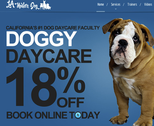 Doggy Daycare Website Cover